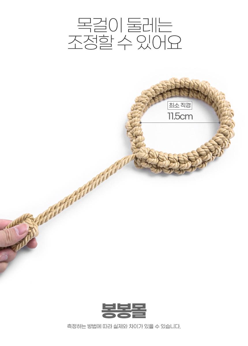 노예 목줄