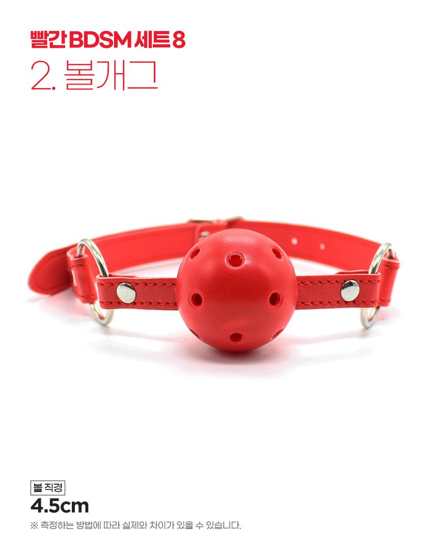빨간 BDSM 8종 세트